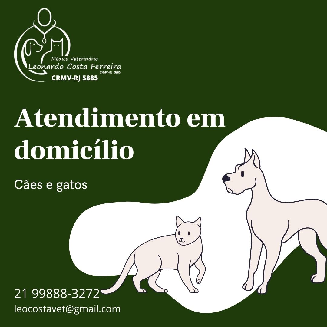 Veterinário em domicílio, Dr Leonardo Costa Ferreira, Jacarepagua, Barra, Recreio e Vargens Rj